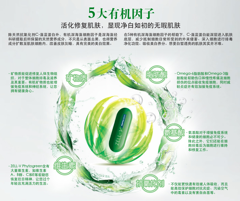5-Factors-Chinese